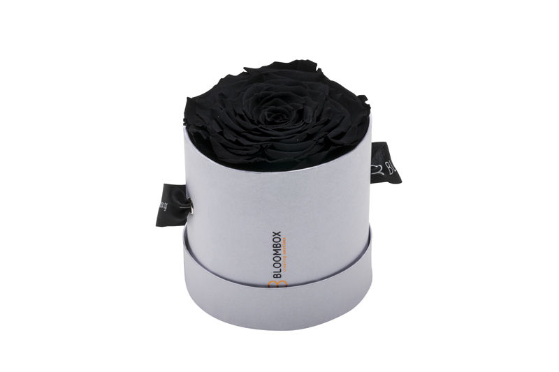 Extreme Emotional Rose Black Roses Round White
