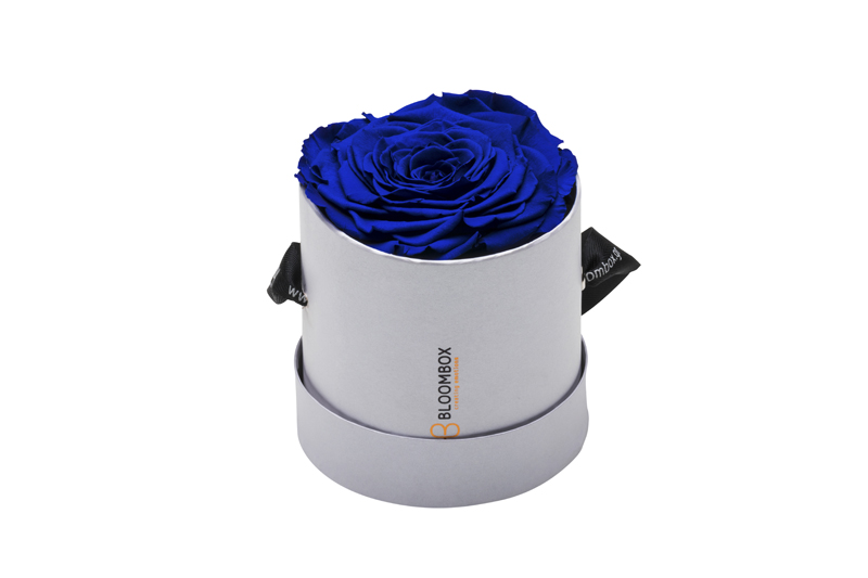 Extreme Emotional Rose Velvet Blue Round White